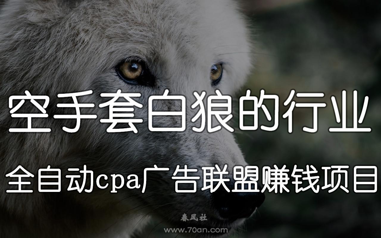 空手套白狼的行业:全自动cpa广告联盟赚钱项目