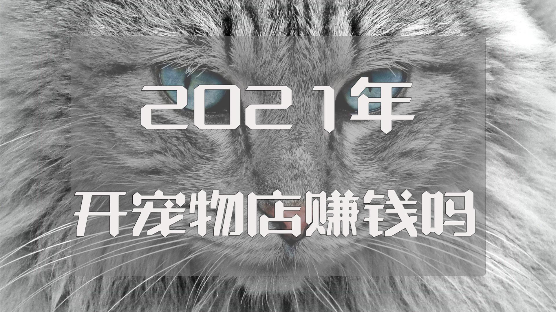 """021年开宠物店赚钱吗?那是肯定的"""""""